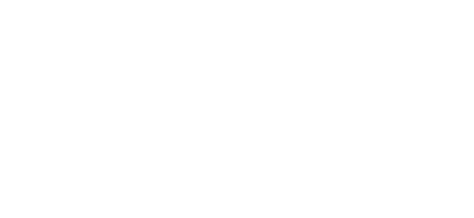 Ponto Icarus